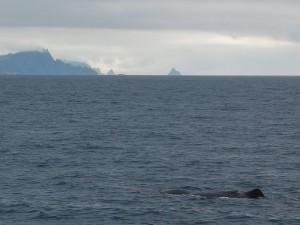 Walrücken - in Hintergrund Andøya